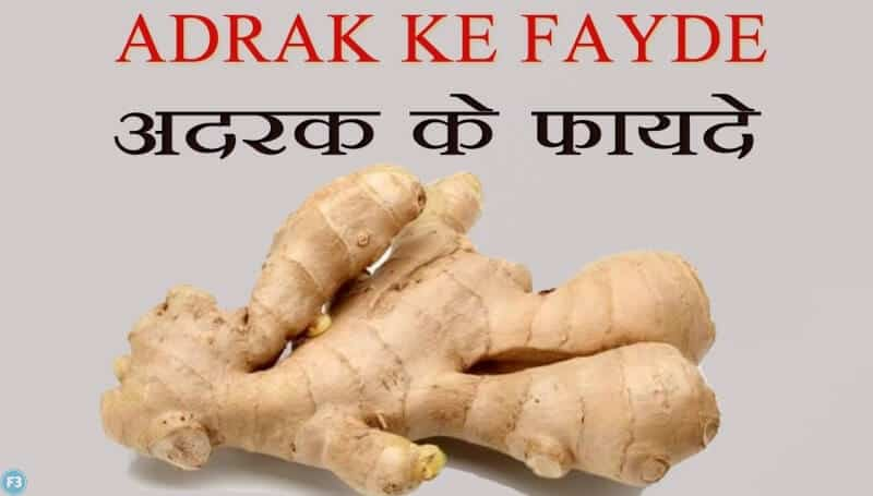 अदरक के फायदे benefits of ginger root