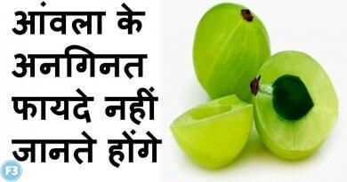 Amla benefits in hindi रोज खाएंगे 1 आंवला तो जानिए बॉडी पर होंगे ये 10 असर