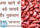 Kidney Beans benefits राजमा (Rajma) खाने के १० बड़े फायदे और नुकसान
