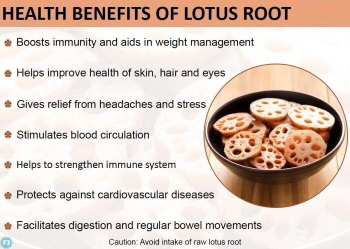 Lotus Root Benefits