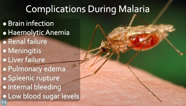 Malaria treatment in Hindi