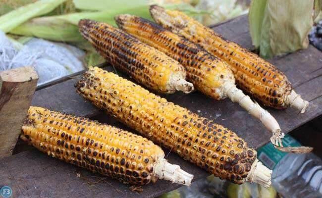 Corn Benefits