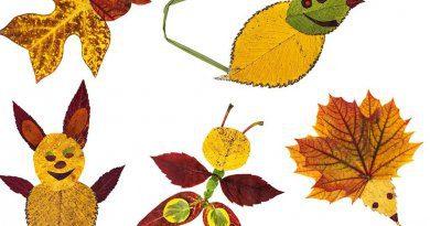 Leaf art for kids